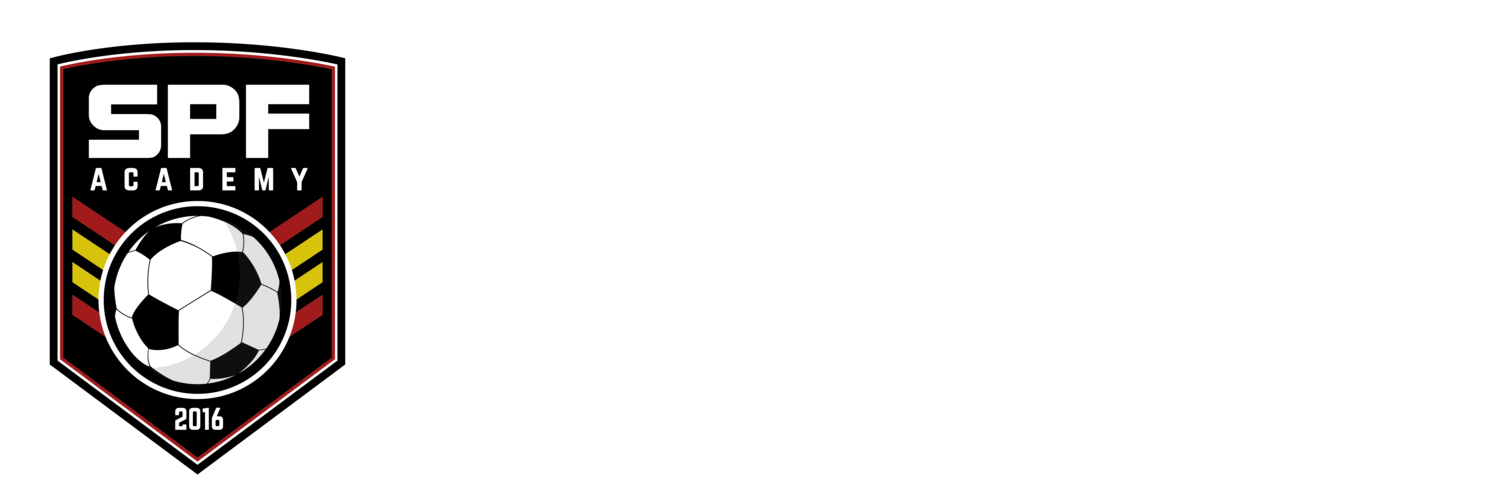 SPANISH PRO FOOTBALL